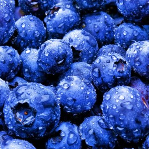 Radiation kills, blueberries save.