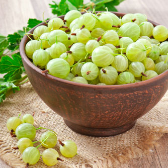 More anti-inflammatory berry power – Gooseberry and stroke
